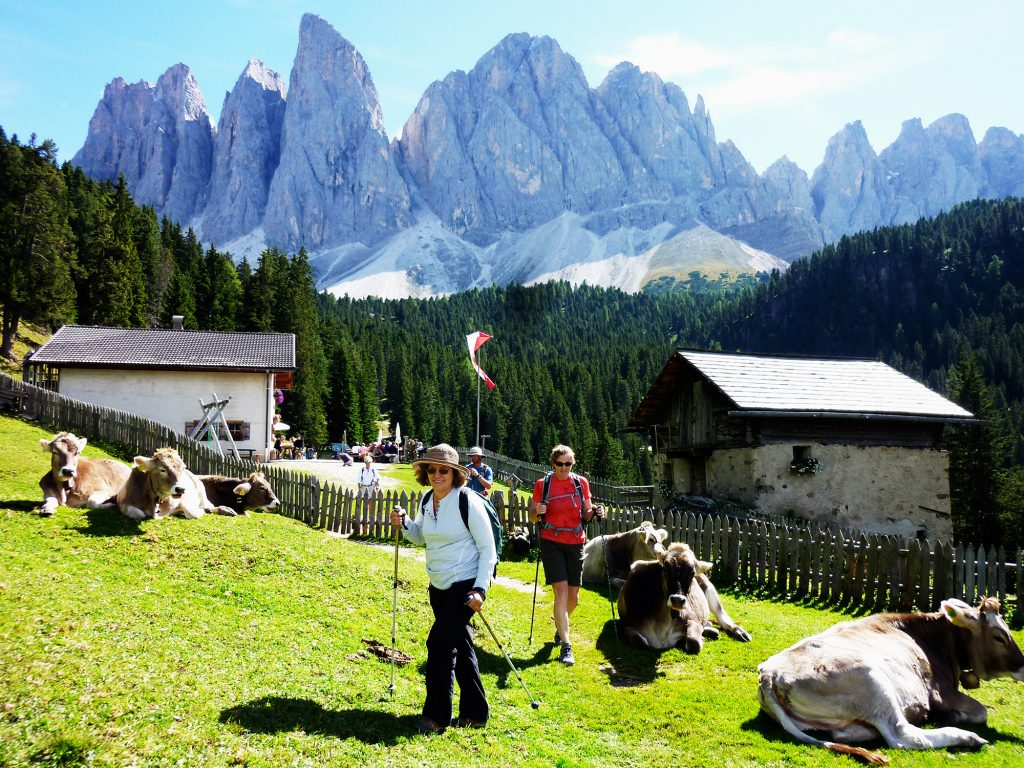 Dolomites-Hiking-The-Oodles